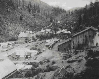 Washington Gold Mines
